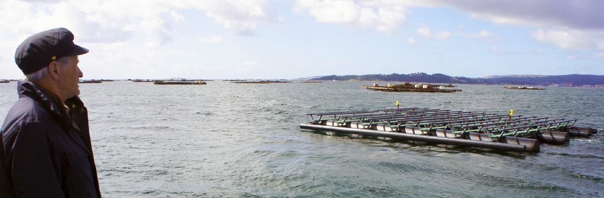 Diseño y fabricación de plataformas para cultivos marinos